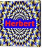 Herbert Acrylic Print