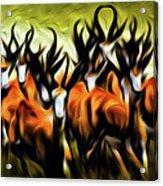 Herd Acrylic Print