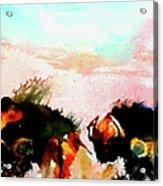 Herd Of Buffalo Acrylic Print