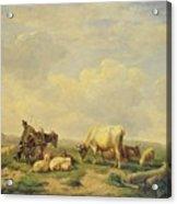 Herdsman And Herd Acrylic Print