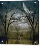 Heron By Moon Glow  Acrylic Print