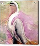 Heron Serenity Acrylic Print