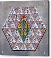Hexagonia 3 Acrylic Print