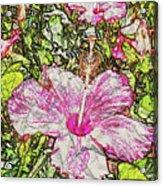 Hibiscus 101516 1a Acrylic Print