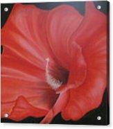 Hibiscus Melody Acrylic Print