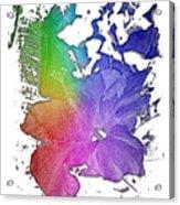 Hibiscus S D Z 2 Cool Rainbow 3 Dimensional Acrylic Print