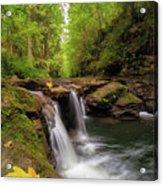 Hidden Falls At Rock Creek Acrylic Print