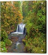 Hidden Falls In Autumn Acrylic Print