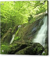 Hidden Falls - Shenandoah National Park. Acrylic Print