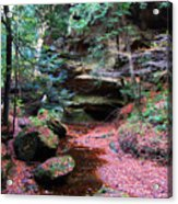 Hidden Jewel Acrylic Print by Vijay Sharon Govender