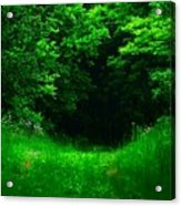 Hidden Meadow Acrylic Print