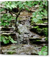 Hidden Stream Acrylic Print