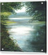 Hidden View Acrylic Print