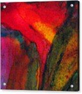 Hide-away Acrylic Print