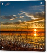 Higgins Lake Sunset With Saw Grass Acrylic Print
