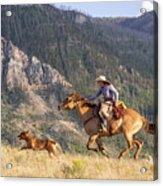 High Country Ride Acrylic Print