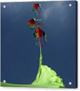High Hopes Acrylic Print