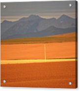 High Plains Of Alberta With Rocky Mountains In Distance Acrylic Print