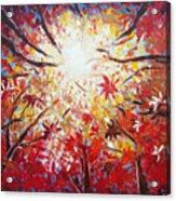 High Red Acrylic Print