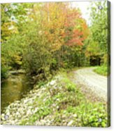 High Road Or Low Road. Acrylic Print