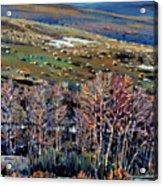 High Sierra Acrylic Print