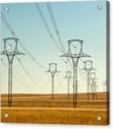 High Voltage Power Lines Acrylic Print