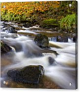 Highland River In Autumn Acrylic Print