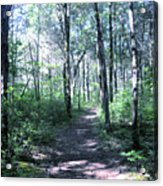 Hike In The Park Acrylic Print