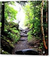 Hiking Acrylic Print