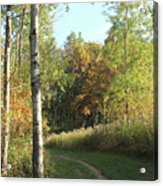 Hiking Trail In Autumn Sunset Acrylic Print