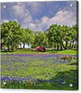 Hill Country Farming Acrylic Print