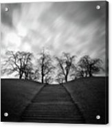 Hill, Stairs And Trees Acrylic Print by Peter Levi