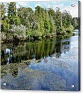 Hillsborough River 7 Acrylic Print