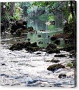 Hillsborough River II Acrylic Print