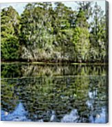 Hillsborough River Panorama 1 Acrylic Print