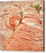 Hillside Of Color In Valley Of Fire Acrylic Print