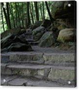 Hillside Trail Acrylic Print