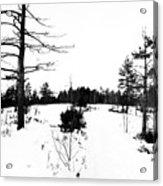 Hilltop Acrylic Print