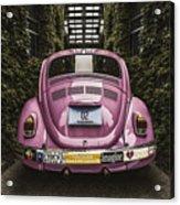 Hippie Chick Love Bug Acrylic Print