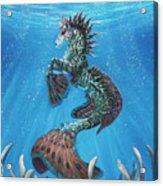 Hippocampus Acrylic Print