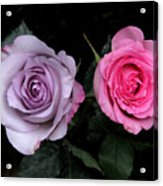 His And Hers Acrylic Print