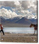 His Horse, Tibet, 2007  Acrylic Print