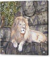 His Majesty Acrylic Print