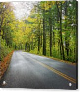 Historic Columbia River Highway In Fall Acrylic Print