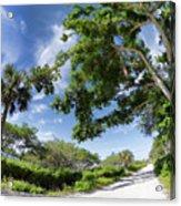 Historic Jungle Trail Vero Bch Fl I Acrylic Print