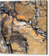 History Of Earth 4 Acrylic Print by Heiko Koehrer-Wagner