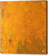 Hkf Yellow Planet Surface Acrylic Print