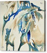 Holding On     War Ponies Acrylic Print
