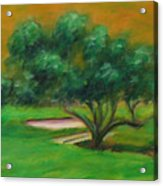 Hole 14 Split The Difference Acrylic Print
