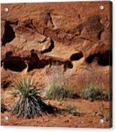 Holes - Yucca - Kodachrome Basin Acrylic Print
